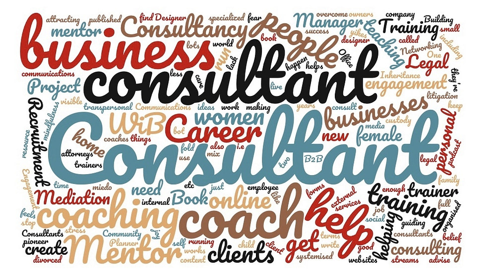 what do home based coaches or consultants do